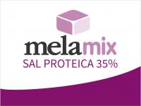 BOVINOS_CARNE_MELAMIX_SAL PROTEICA 35%