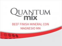 BOVINOS_CARNE_NUCLESO_QUANTUM BEEF FINISH MINERAL MAGNESIO MN