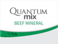 BOVINOS_CARNE_QUANTUM_MIX_BEEF_MINERAL