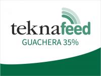 BOVINOS_CARNE_TEKNAFEED_GUACHERA 35%