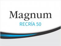 CERDOS_MAGNUM_RECRÍA 50