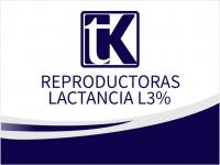 CERDOS_TK_REPRODUCTORAS lactancia3%