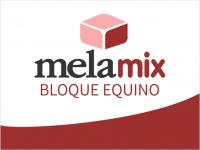 EQUINOS_MELAMIX_BLOQUE_EQUINO